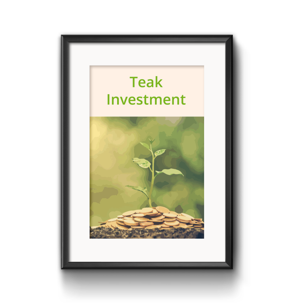 Teak Investment als grüne Investments